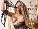 Brenda escort trans