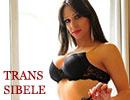 Trans Toulon