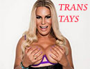 Trans Tays Paris