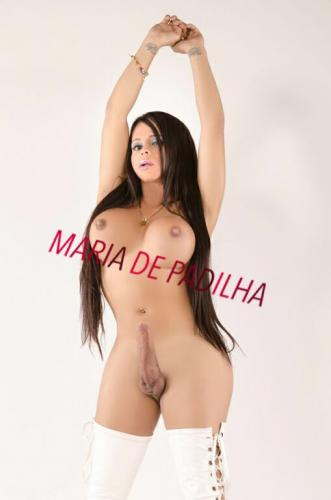 >Trans colombine maria activa pasiva