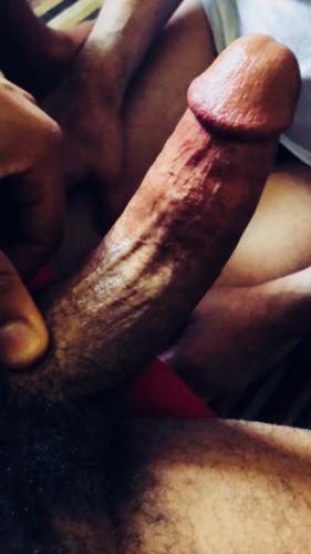 Algerientbm escort boy gay - Escort Albertville