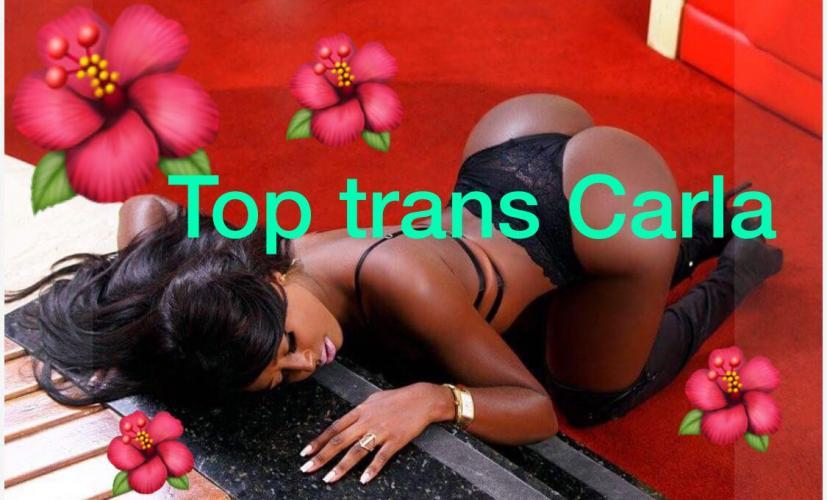 Top trans carla - Escort Salon De Provence